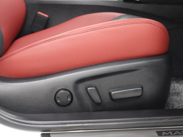 250S ファイナルエディション SDナビ フルセグ DVD再生 ETC ドラレコ シートヒーター LEDヘッドライト TSS(15枚目)