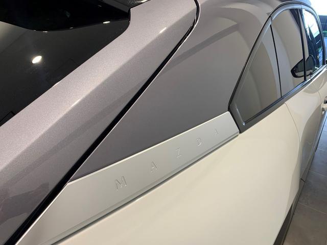 登録済み未使用 修復なし インダストリアルクラシックパッケージ スリートーン BOSE12スピーカー 安全装置 バックモニター 8.8インチディスプレー CarPlay/AndroidAuto(10枚目)