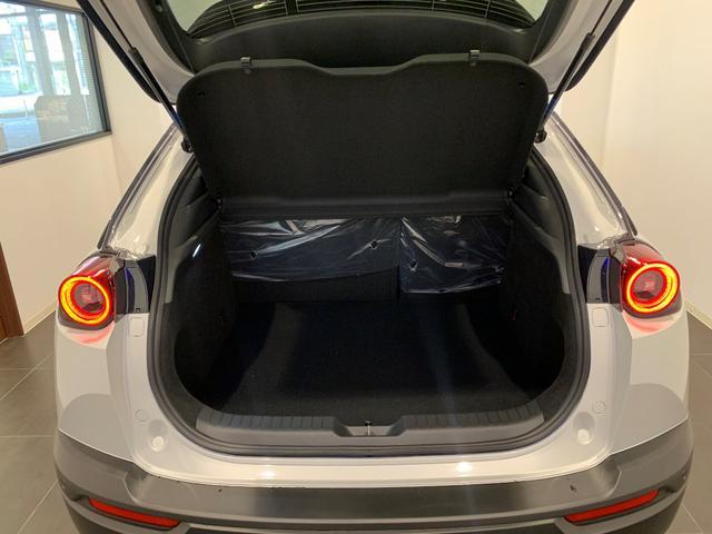 登録済み未使用 修復なし インダストリアルクラシックパッケージ スリートーン BOSE12スピーカー 安全装置 バックモニター 8.8インチディスプレー CarPlay/AndroidAuto(26枚目)