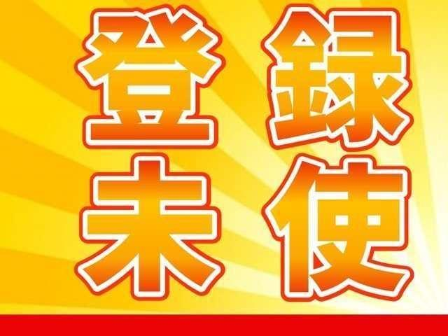 DX GLエマージェンシーブレーキパッケージ キーレス オーディオCD VDC LDW オートライト ハロゲンハロゲンヘッドライト エマージェンシーブレーキ(2枚目)