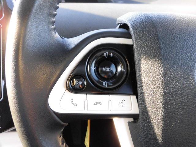Sセーフティプラス ETC バックカメラ 革巻きハンドル ステアリングスイッチ オートライト オートハイビーム クルーズコントロール(18枚目)