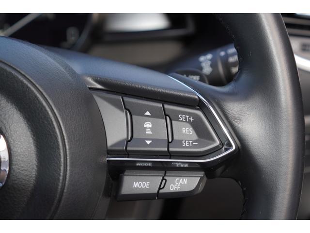 22XD プロアクティブ 後期型/MAZDASPEEDエアロ/TEIN車高調/HKSマフラー/ENKEI18インチAW/メモリーナビ/フルセグ/バックカメラ/ETC/スマートキー/前後ドライブレコーダー(29枚目)