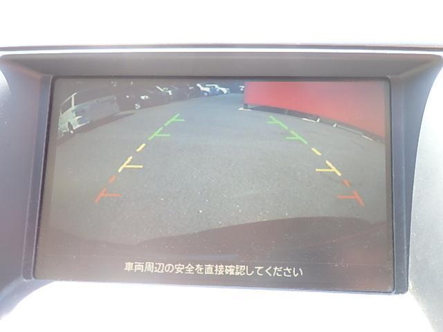250XV ナビ ETC ローダウン TV アルミ Bカメラ(17枚目)