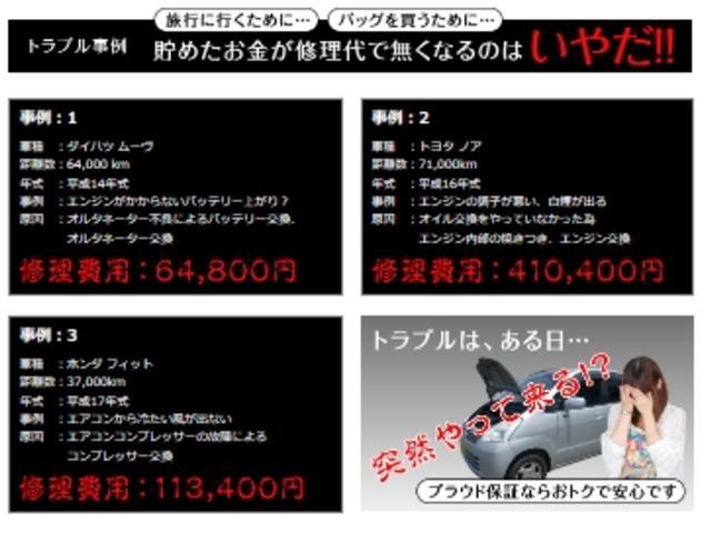 AS プラチナSEL-II 走7万k台 両側電動 ローダウン(64枚目)