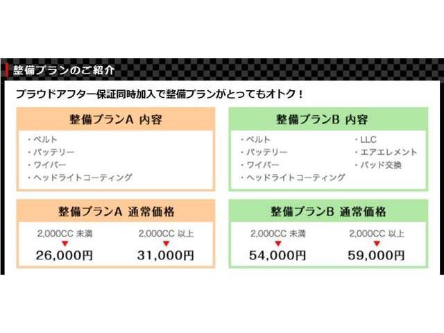 AS プラチナSEL-II 走7万k台 両側電動 ローダウン(78枚目)