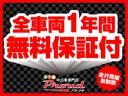 AS プラチナSEL-II 走7万k台 両側電動 ローダウン(56枚目)