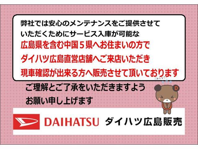 スタイルX リミテッド SAIII バックカメラ対応(2枚目)