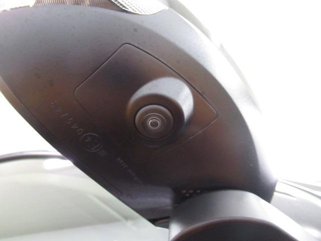 G -サポカー対象車- スマアシ ミラクルオープンドア(21枚目)