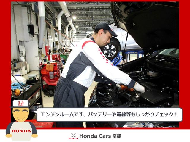 ハイブリッドEX特別仕様車スタイルエディション ETC 衝突軽減ブレーキ  ワンオーナー(45枚目)