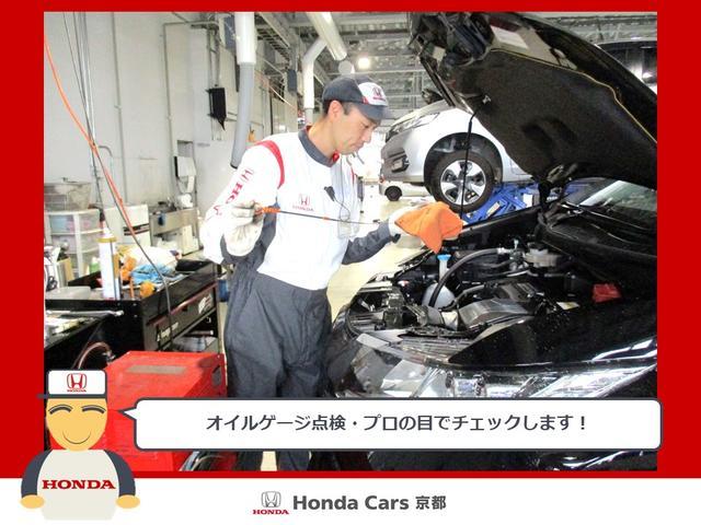 13G・Fパッケージ コンフォートエディション ワンセグ バックカメラ シートヒーター(46枚目)