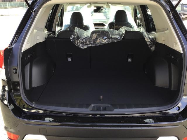 アドバンス 4WD SUV・キーフリー・パワーシート(19枚目)