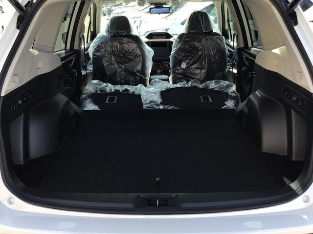 アドバンス 4WD SUV・キーフリー・パワーシート(20枚目)