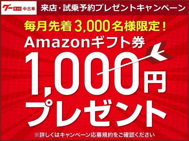 250G リラックスセレクション HDDナビ フルセグTV(50枚目)