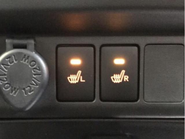 カスタムG リミテッド2 SA3  LEDヘッドランプ(14枚目)