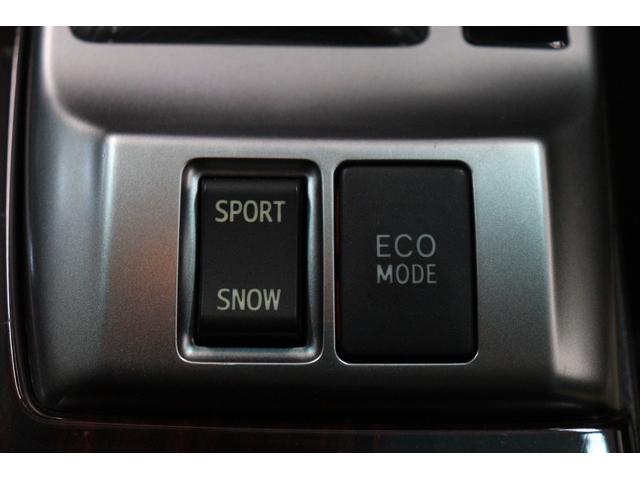 250G リラックスセレクション G's仕様/新品WORKシュバート19AW/新品TEIN車高調/BRASH三眼ヘッドライト/シーケンシャルスモークテールランプ/ETC/バックカメラ/エアコンパネル打ち替え/(34枚目)