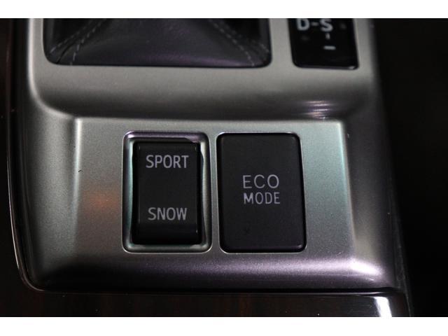 250G リラックスセレクション・ブラックリミテッド カスタムペイントボンネット/RDSバンパー/モデリスタエアロ/リアG's仕様/新品SSRフォーミュラメッシュ19AW/新品TEIN車高調/OP付きBRASHヘッドライト/OP付きスモークテール(29枚目)