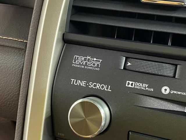 RX200t バージョンL新品Fスポ仕様/マークレビンソンS(6枚目)