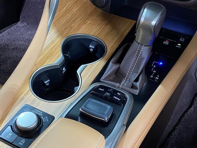 RX200t バージョンL新品Fスポ仕様/マークレビンソンS(15枚目)
