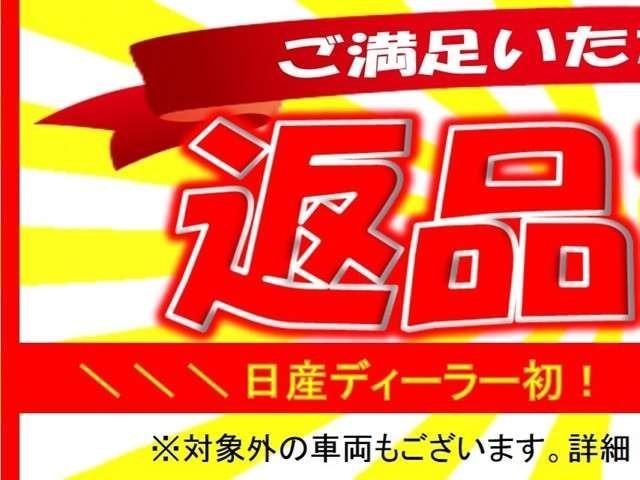 DXインテリジェントエマージェンシーブレーキ純正AM・FM(2枚目)