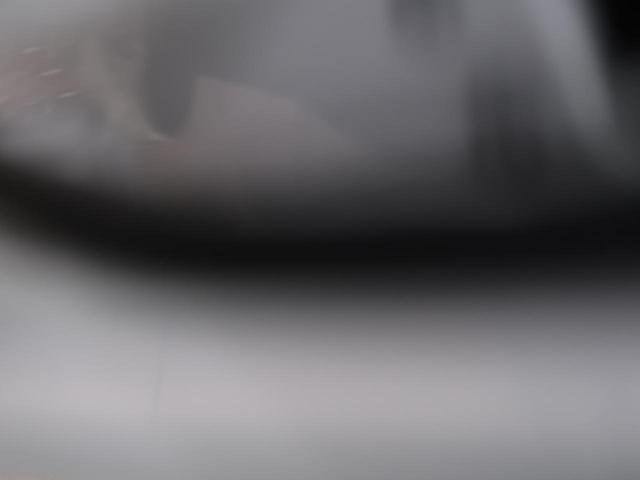 プレミアム 純正9インチナビ バックカメラ レーダークルーズコントロール 車線逸脱防止システム パワーバックドア デュアルエアコン ETC プッシュスタート(28枚目)