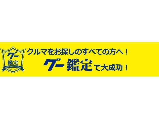 DICE 純正HDDナビ BT接続 後席TV シートカバー シートヒーター HID(36枚目)