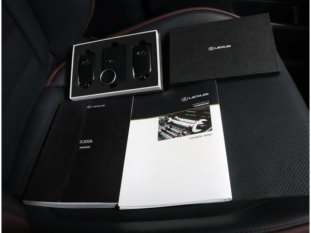 IS300h Fスポーツ 革シート フルセグ メモリーナビ DVD再生 ミュージックプレイヤー接続可 バックカメラ 衝突被害軽減システム レーダークルーズ ETC LEDヘッドランプ ワンオーナー(19枚目)