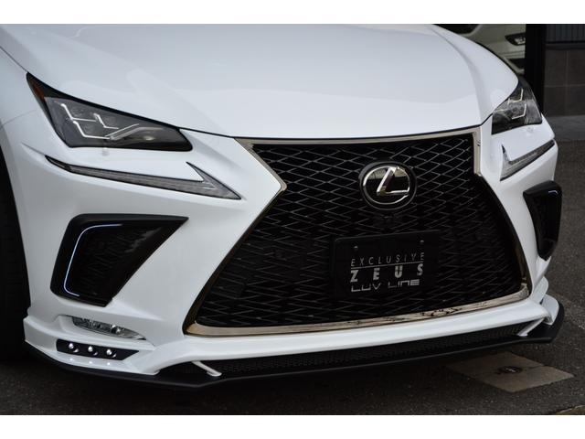 NX300 Fスポーツ ZEUS新車カスタムコンプリート(11枚目)