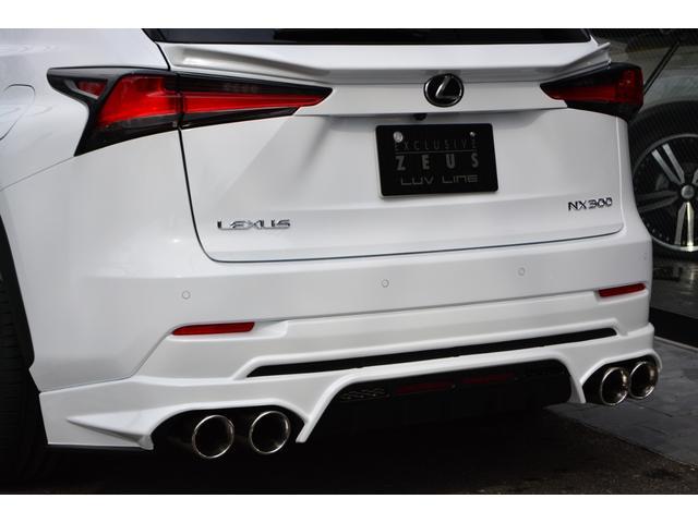 NX300 Fスポーツ ZEUS新車カスタムコンプリート(13枚目)