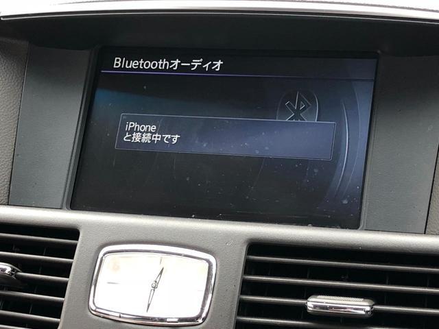 VIPパッケージ /本革/ツインTV/ナビ/インテリクルコン(18枚目)