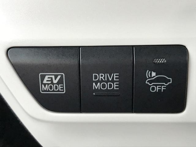 S セーフティセンスP SDナビ バックモニター 禁煙車(38枚目)