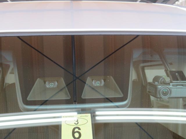 デラックスSAIII サポカー対象車 7インチナビ ドラレコ(23枚目)