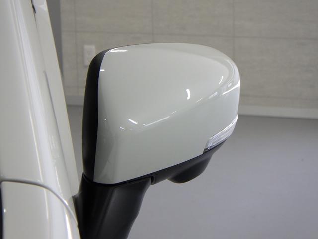 スティングレー HYBRID X 全方位カメラ 被害軽減B(24枚目)