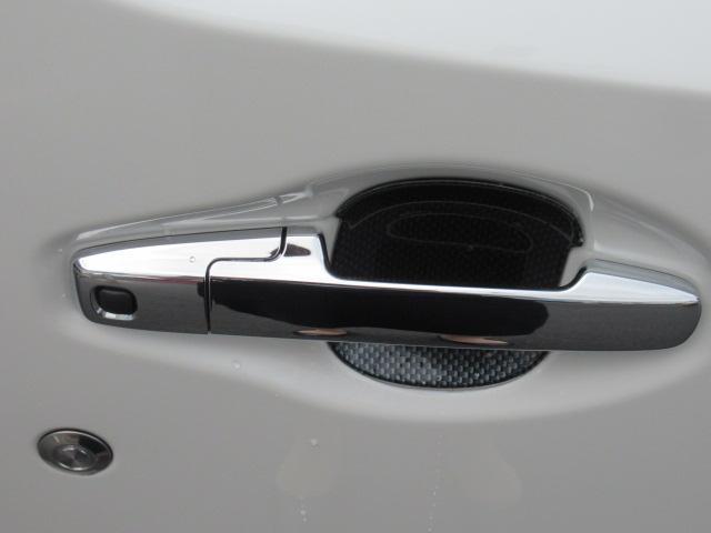 メッキドアハンドル。傷つきやすいハンドル付近を守るプロテクター付き!