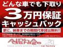 2.0i-L 3列シート7人乗り禁煙車ナビ地デジ(43枚目)