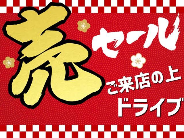 スタイルX リミテッド SAIII(3枚目)