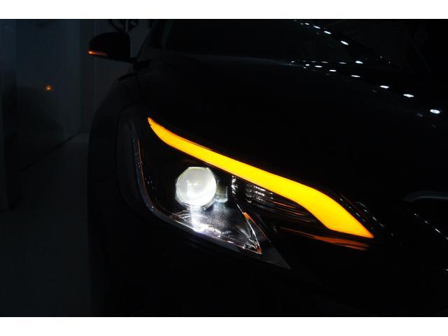250G リラックスセレクション・ブラックリミテッド 特別仕様車 新品Gs仕様(21枚目)