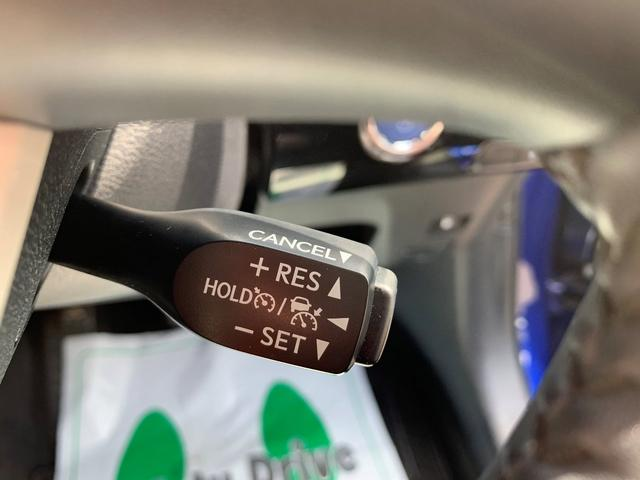 S 被害軽減ブレーキ・クルコン・LEDライト・フォグライト(18枚目)