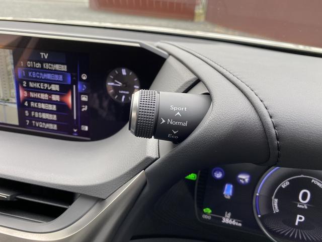 ES300h 純正SDナビマルチ・黒革エアーS・サンルーフ プリクラッシュセーフティ・LTA・クリアランスソナー・LEDライト・オートハイビーム・電動リヤシェイド・ビルトインETC(24枚目)
