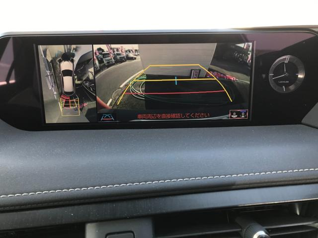 UX250h Fスポーツ ワンオーナー 革シート ナビ フルセグTV バックカメラ アルミホイール ETC(19枚目)