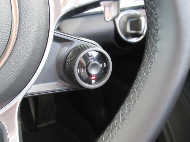 ベースグレード ディーラー車 5人乗 スポーツクノパッケージ ソフトクローズドア ACC スポーツテールパイプ PASM LEDヘッドライト サラウンドビューモニター 純正19AW ブラックレザーシート(15枚目)