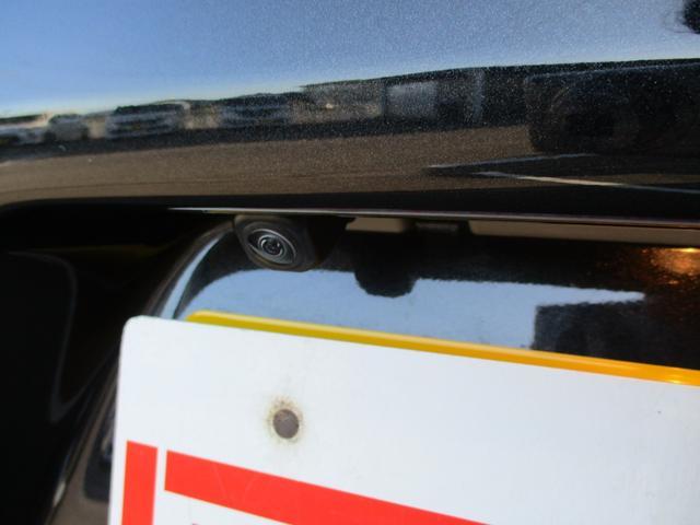 カスタムX LEDヘッドライト ハイビームアシスト 両側電動スライドドア バックカメラ 前後衝突被害軽減ブレーキ 車線逸脱警報(3枚目)
