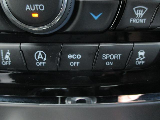 トレイルホーク 152台限定車 74台限定カラー スエードインサートレザーシート シートベンチレーション 専用18インチホイール ブラックボンネットデカール 純正ナビ 地デジTV フロントサイドバックカメラ(72枚目)