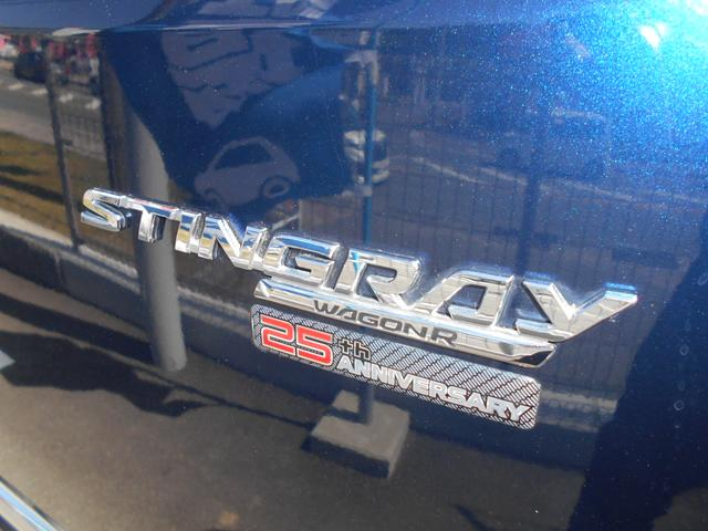 スティングレー 25周年記念車 HYBRID Xリミテッド(51枚目)