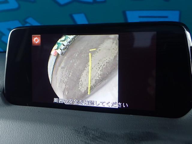 25S Lパッケージ フルセグSDナビ 黒革 Pバックドア(10枚目)