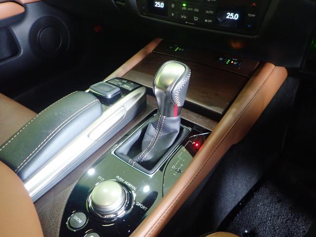 GS300hブラックシークエンス SDマルチ本革 特別仕様車(14枚目)