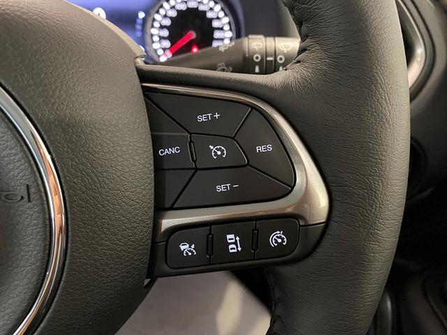 リミテッド 登録済未使用車 新車保証継承 純正ナビTV(19枚目)