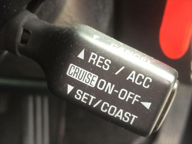 S300ベルテックスエディション 本革 マルチ ローダウン(19枚目)