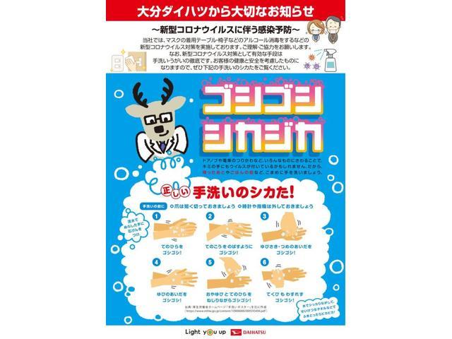カスタムG リミテッドII SAIII(50枚目)