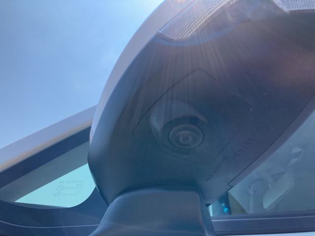 カスタム XリミテッドII SAIII 運転席シートヒーター パノラマモニター対応 LEDヘッドライト LEDフォグランプ(25枚目)