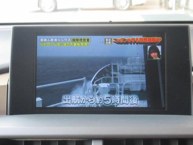 NX200t Fスポーツ SDナビ ETC 全方位カメラ(10枚目)